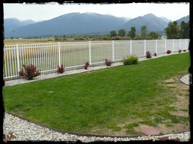 White Metal Fencing